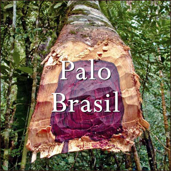 Palo Brasil